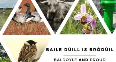 Baile Dúill is Bródúil: Baldoyle Heritage Audit and Development Framework
