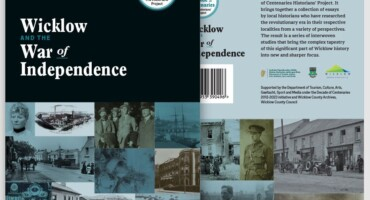 Ebook: Wicklow and the War of Independence