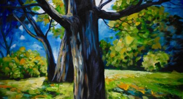 'Ards Forest': An Exhibition of Paintings and Photographs