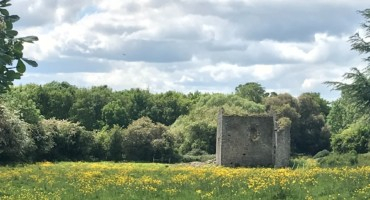 Beaubec Excavations - The Hunt for DeBelloBecco