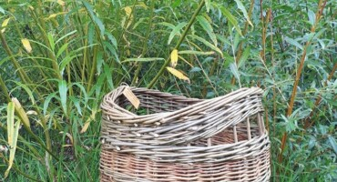 Back To Basics Basketmaking