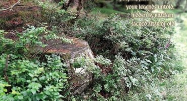 A Moment's Sentiment:  Postcards from Glendalough