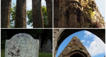 History, geology and biodiversity at St Mary's, New Ross