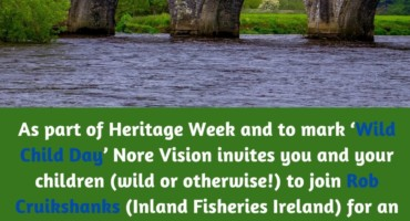 An inquisitive look at eels of the River Nore