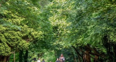Be a Nature Detective - Family Nature Trail